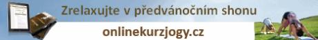 banner predvanocni shon